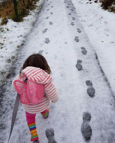 Beas first snow.